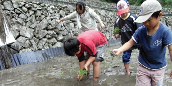 これぞ究極の泥んこ体験!京村牧場の田植え